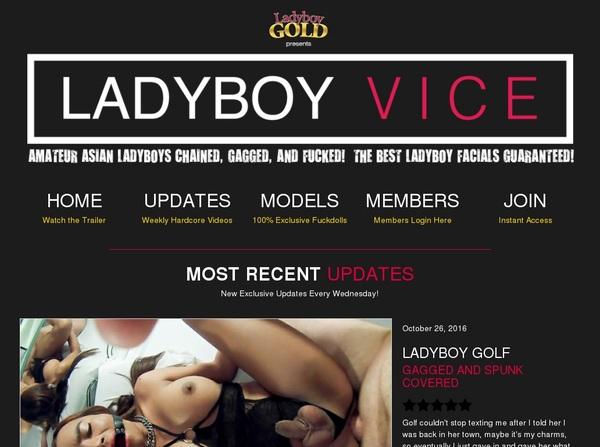 Ladyboy Vice Daily Accounts