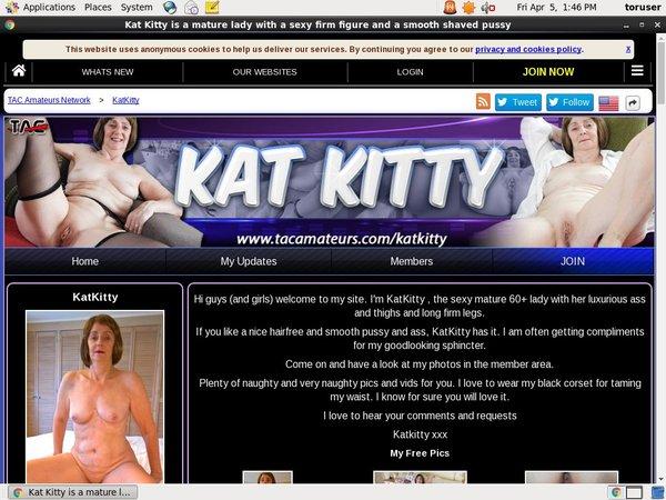 Kat Kitty Get An Account