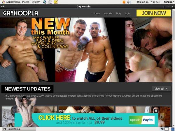 Gayhoopla.com Free Porn